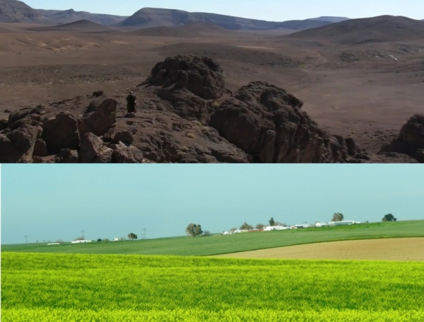 "Top: Abraham in ""The Bible."" Not much in view for Abraham's copious flocks to feed off of. Bottom: Area around Beersheva after winter rains, when nomads would have been grazing their flocks."