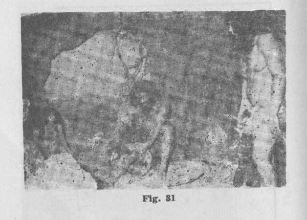 Exhibit of life in a Paleolithic cave from the Palmyra Museum. From al-As'ad, Welcome to Palmyra, p. 82.